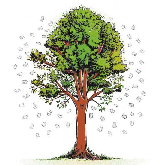 Eko drzewo - KumamGre.pl
