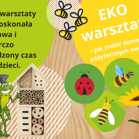 Eko Warsztaty - KumamGre.pl